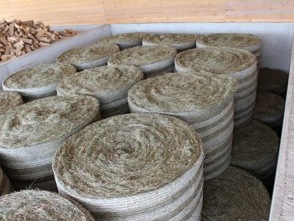 Round_hay_bales_in_drying_bay_1